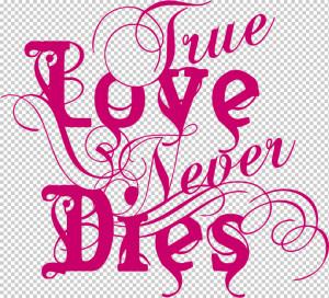 Love Never Dies -Pink